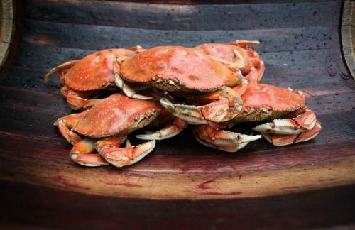 Astoria-Warrenton Crab, Seafood & Wine Festival